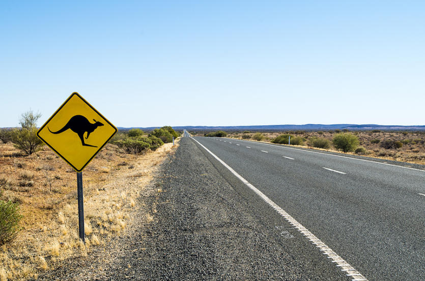 Yellow Kangaroo (roo, Skippy) Sign Next To The Highway (road) In